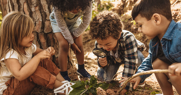 How To Plan A Family Nature Walk